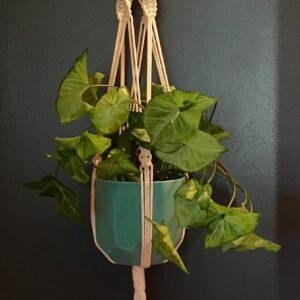 Large handmade macrame hanger with brown beads.